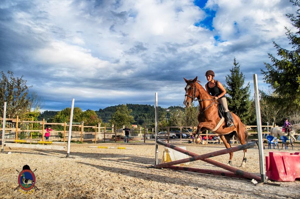 Os Parrulos_clases de equitación_clases de salto_hipica La Coruña_T34