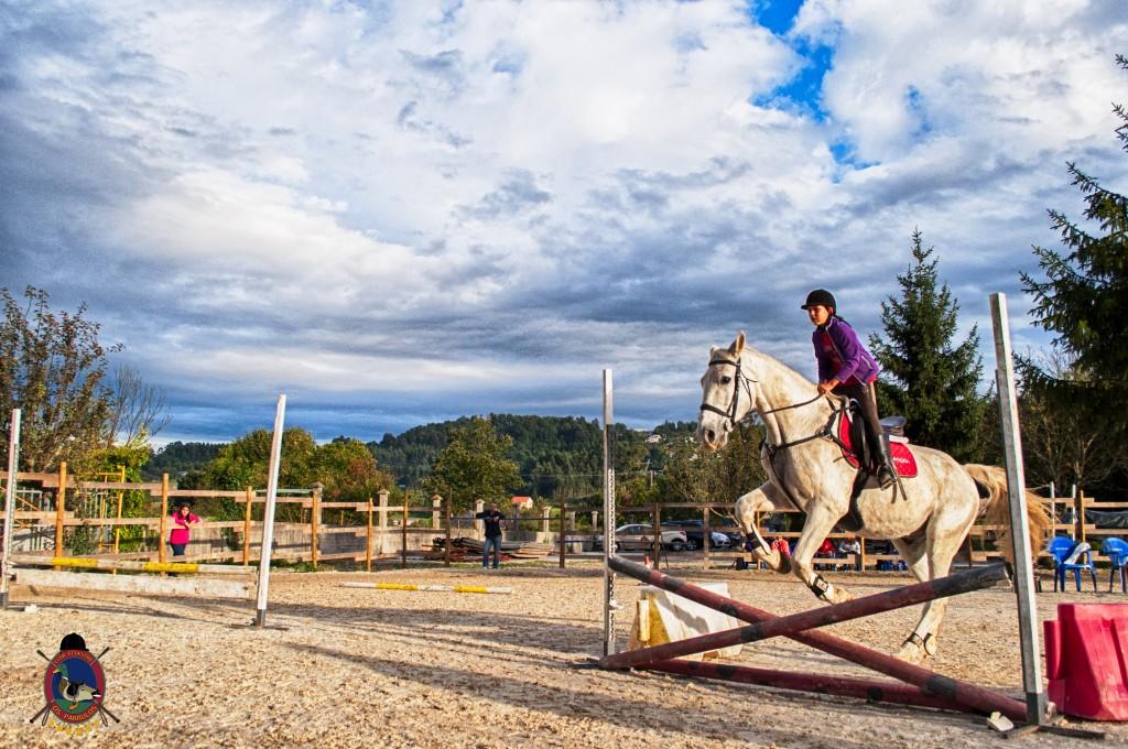 Os Parrulos_clases de equitación_clases de salto_hipica La Coruña_T35