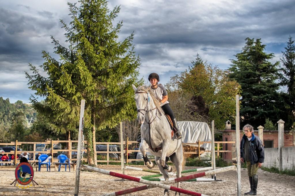 Os Parrulos_clases de equitación_clases de salto_hipica La Coruña_T36