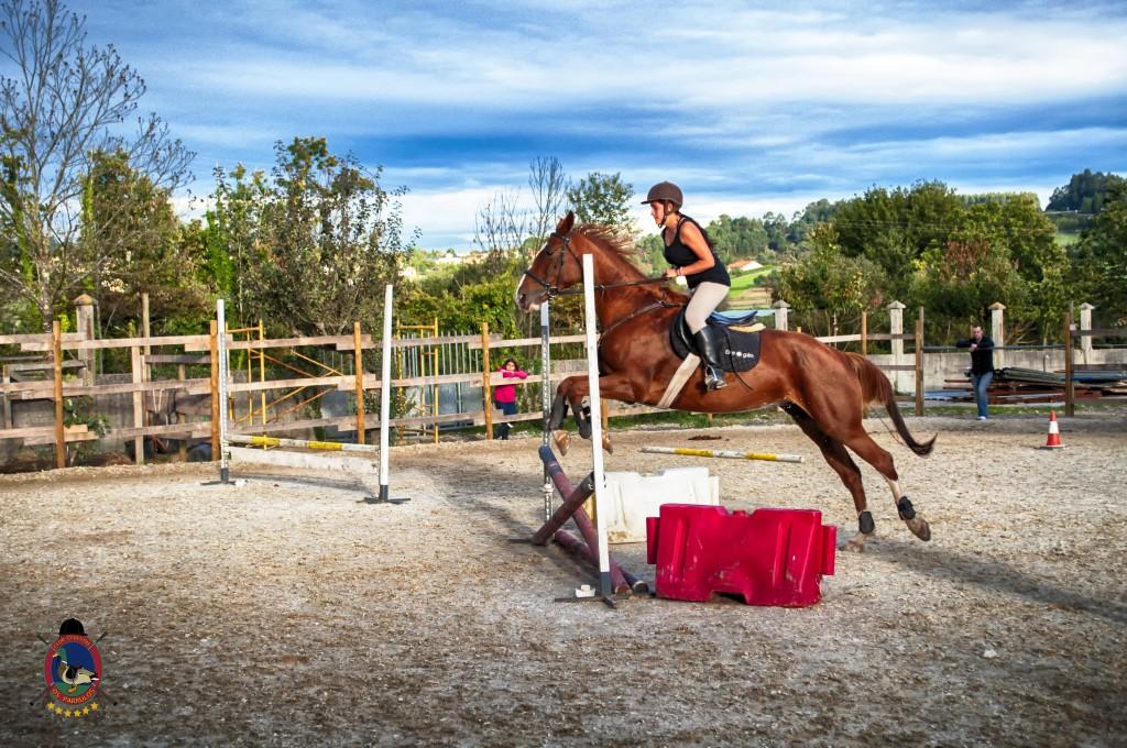 Os Parrulos_clases de equitación_clases de salto_hipica La Coruña_T38