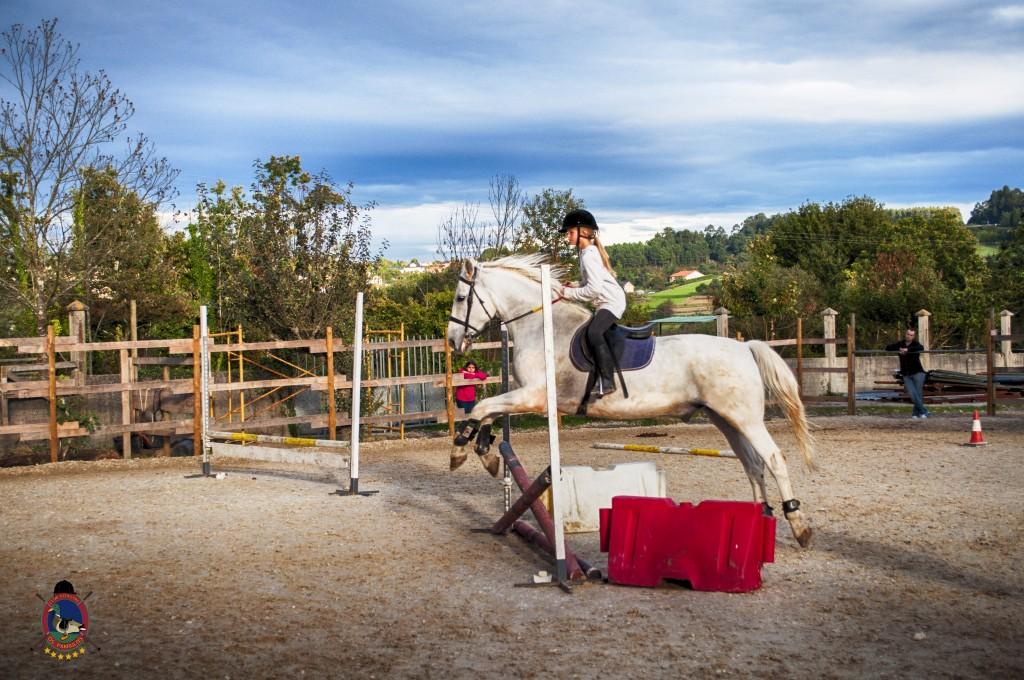 Os Parrulos_clases de equitación_clases de salto_hipica La Coruña_T39