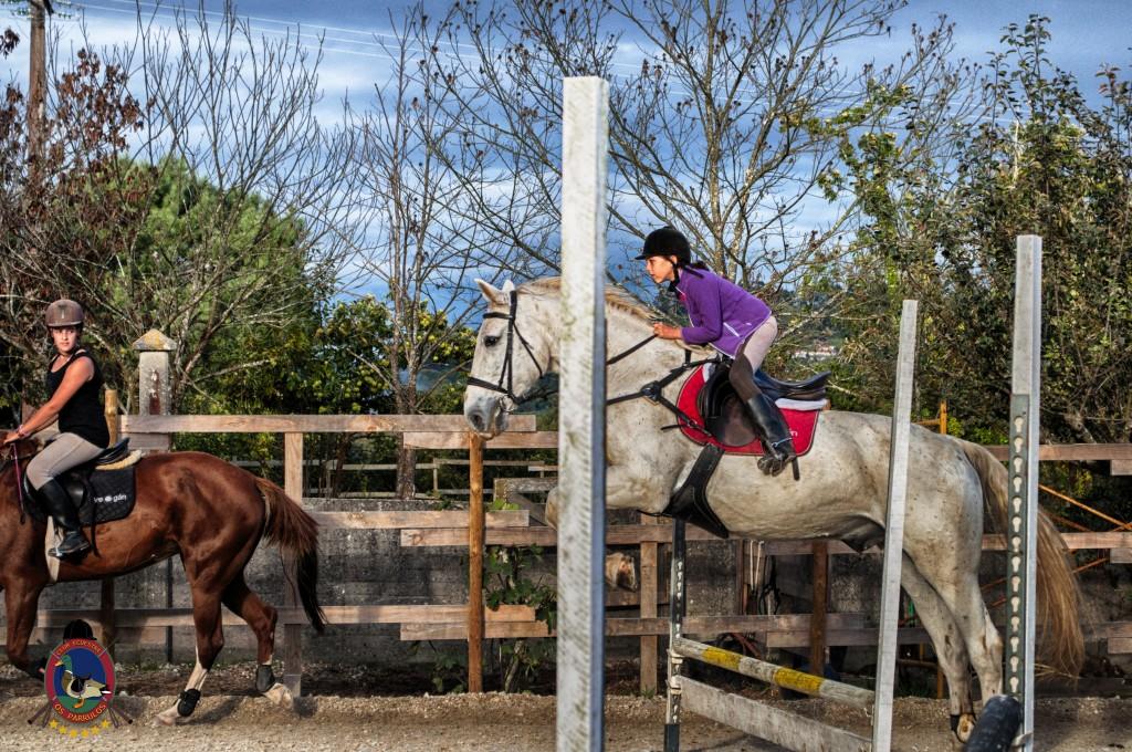 Os Parrulos_clases de equitación_clases de salto_hipica La Coruña_T41