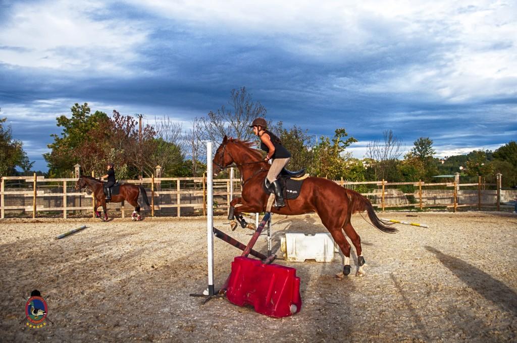 Os Parrulos_clases de equitación_clases de salto_hipica La Coruña_T42