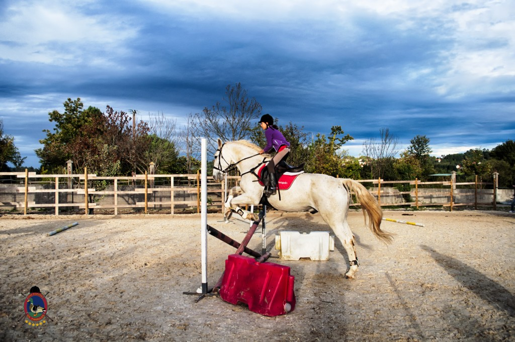 Os Parrulos_clases de equitación_clases de salto_hipica La Coruña_T43