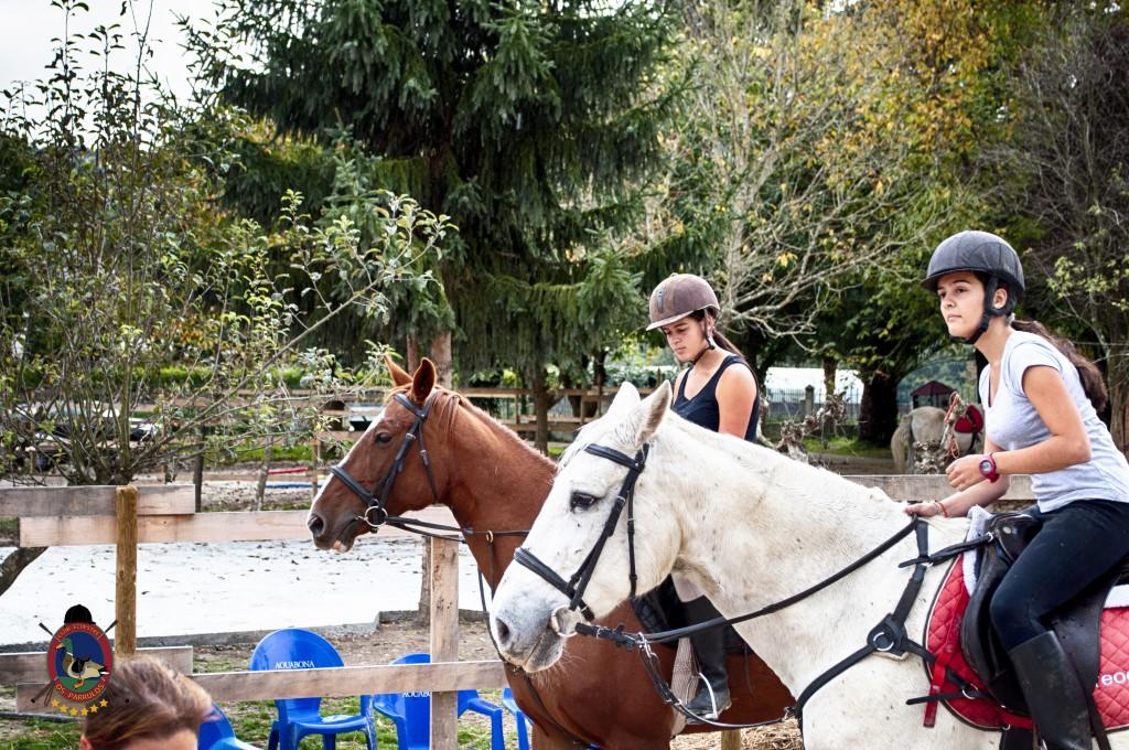 Os Parrulos_clases de equitación_clases de salto_hipica La Coruña_T5