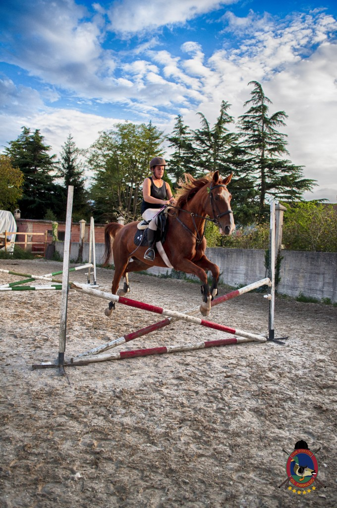 Os Parrulos_clases de equitación_clases de salto_hipica La Coruña_T50