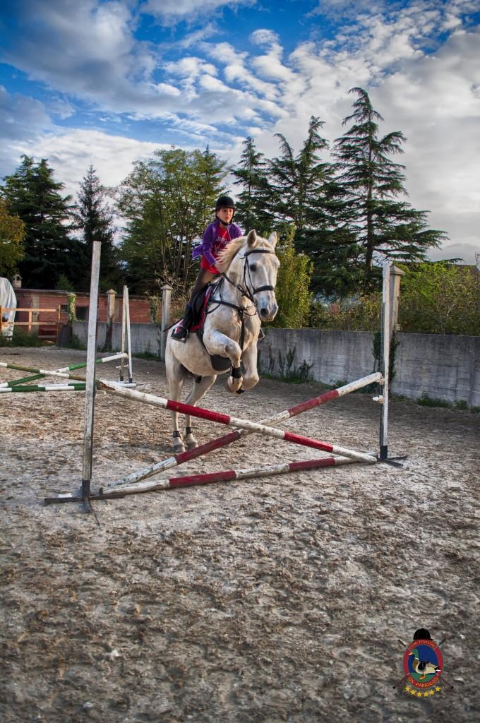 Os Parrulos_clases de equitación_clases de salto_hipica La Coruña_T51