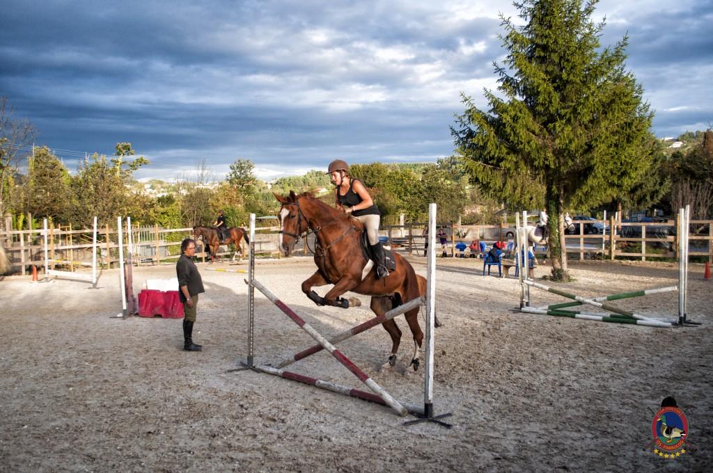 Os Parrulos_clases de equitación_clases de salto_hipica La Coruña_T52