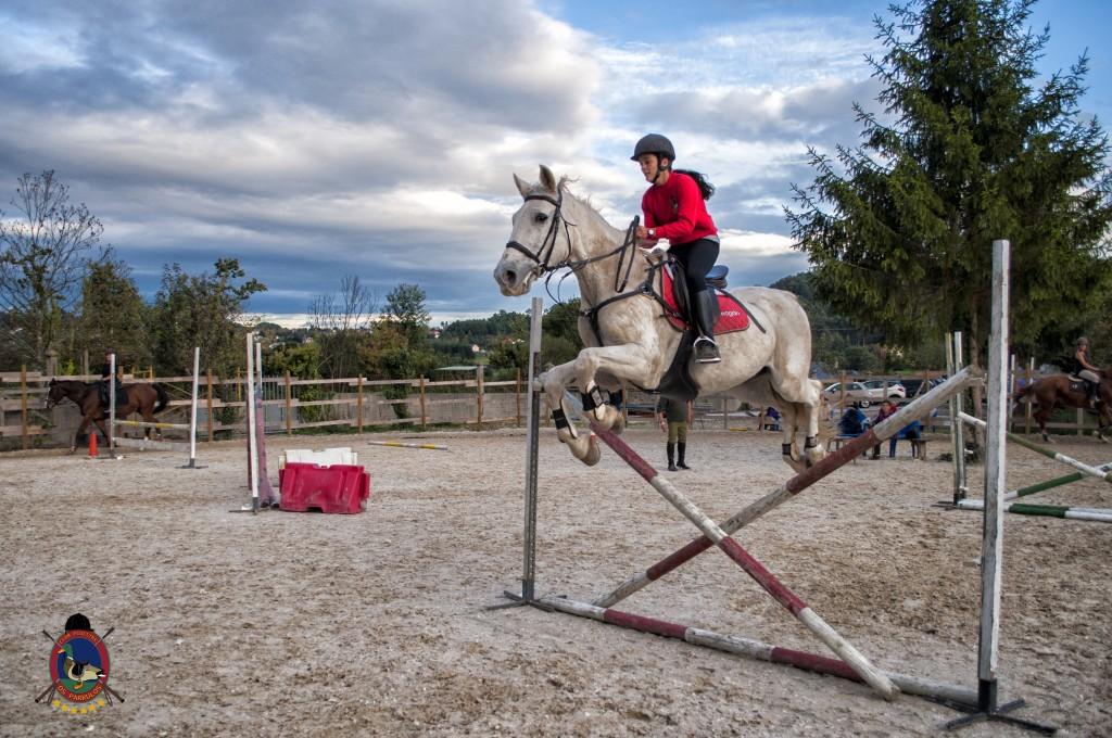 Os Parrulos_clases de equitación_clases de salto_hipica La Coruña_T55