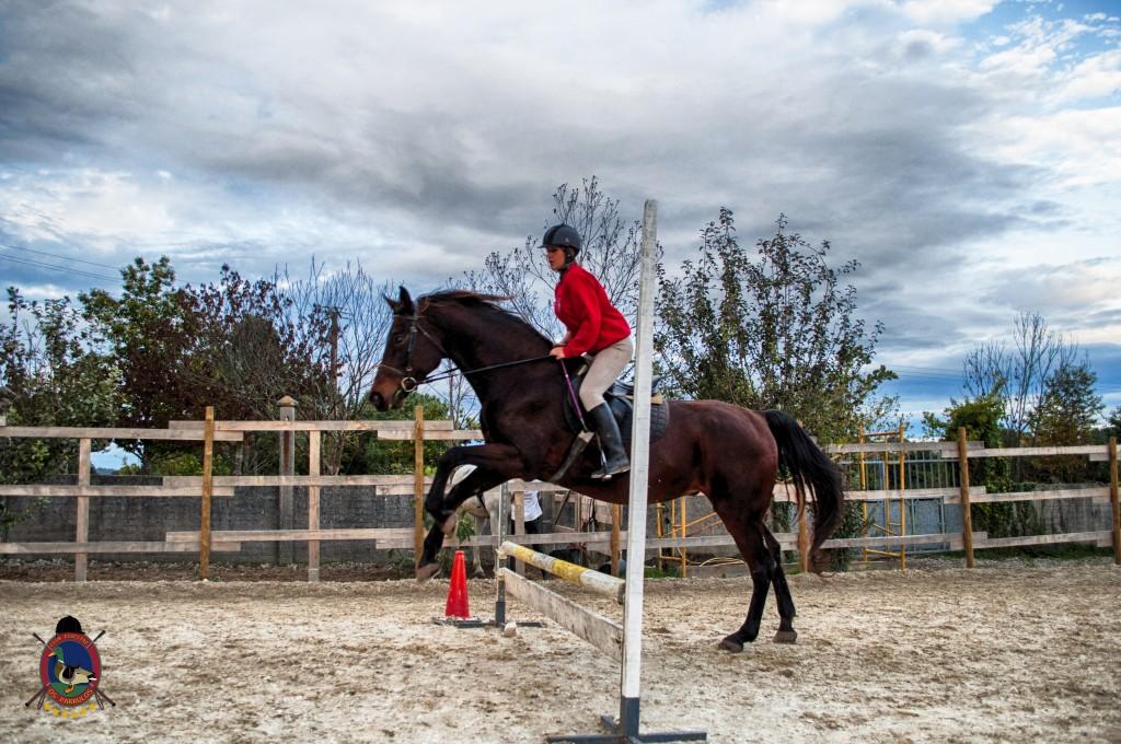 Os Parrulos_clases de equitación_clases de salto_hipica La Coruña_T57