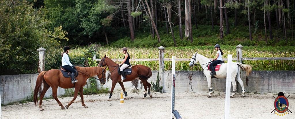 Os Parrulos_clases de equitación_clases de salto_hipica La Coruña_T6