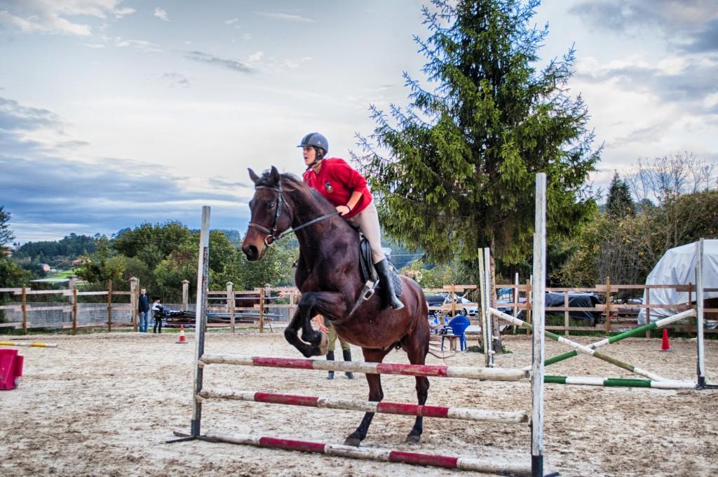 Os Parrulos_clases de equitación_clases de salto_hipica La Coruña_T60