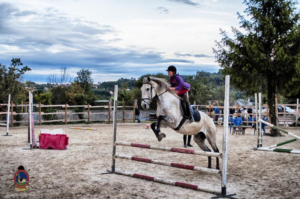 Os Parrulos_clases de equitación_clases de salto_hipica La Coruña_T61