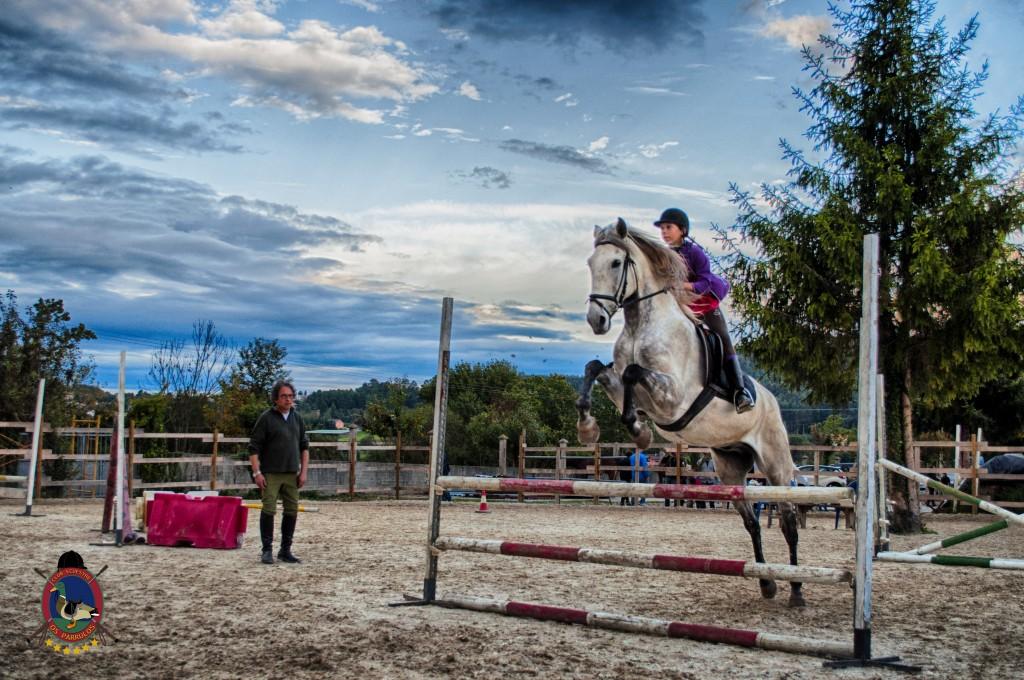 Os Parrulos_clases de equitación_clases de salto_hipica La Coruña_T62