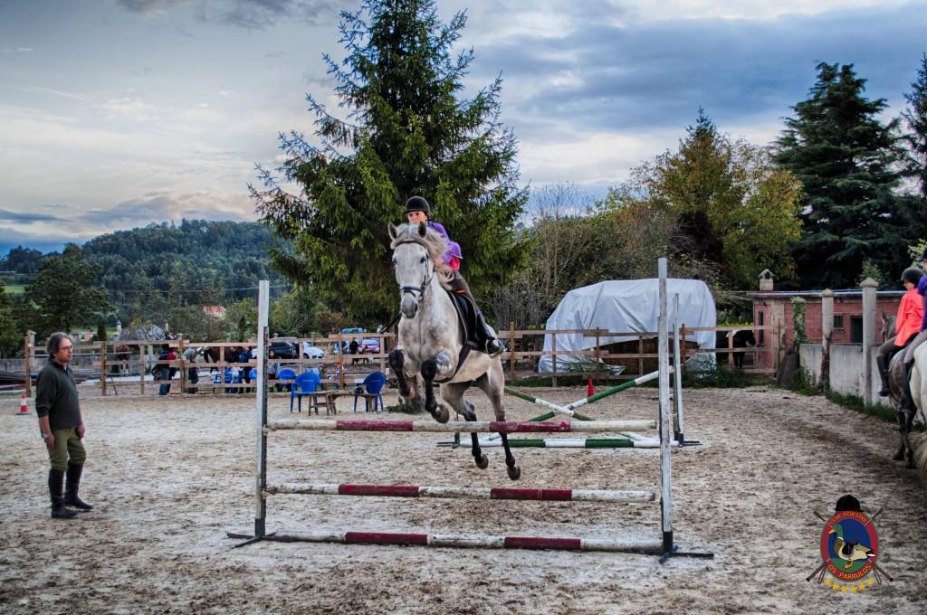 Os Parrulos_clases de equitación_clases de salto_hipica La Coruña_T64