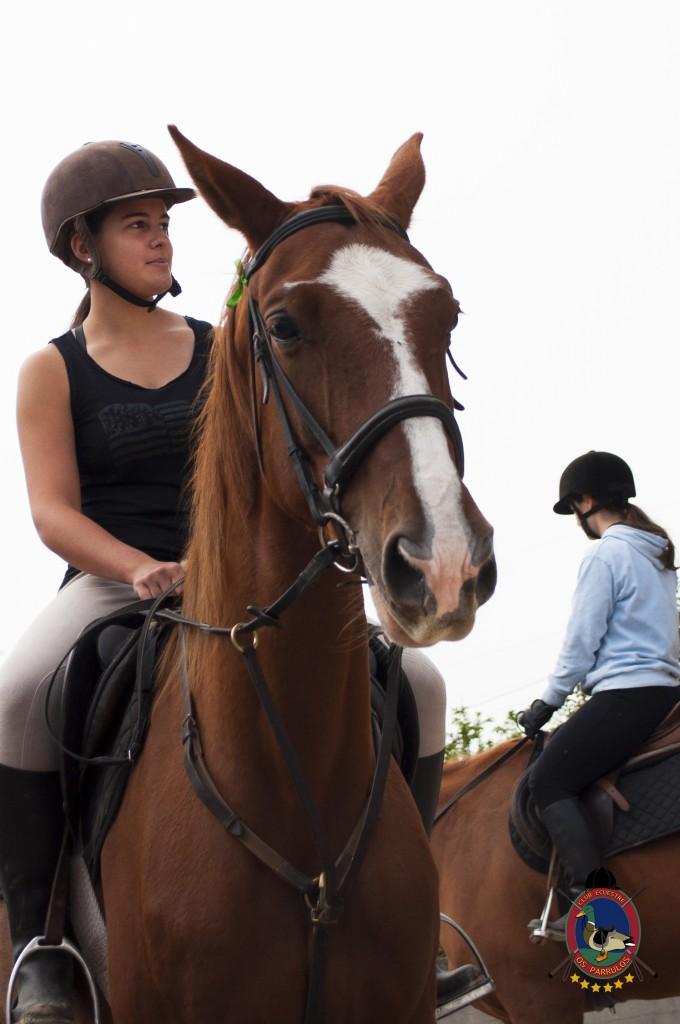 Os Parrulos_clases de equitación_clases de salto_hipica La Coruña_T7