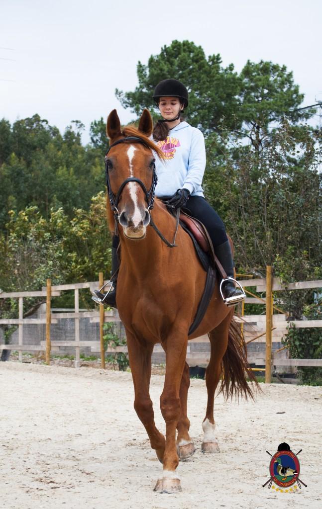 Os Parrulos_clases de equitación_clases de salto_hipica La Coruña_T9