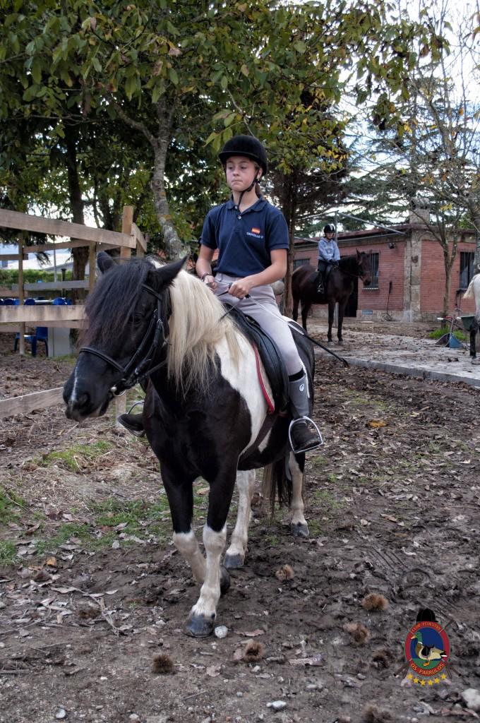 Os Parrulos_clases de equitación_hipica La Coruña_T12