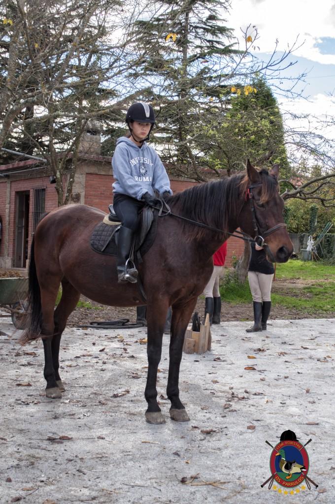 Os Parrulos_clases de equitación_hipica La Coruña_T19