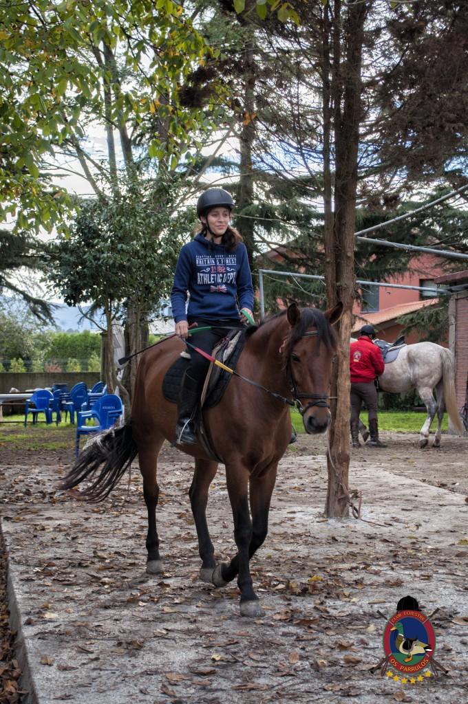 Os Parrulos_clases de equitación_hipica La Coruña_T20