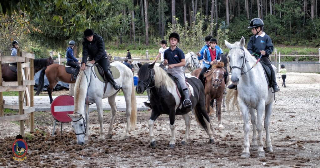 Os Parrulos_clases de equitación_hipica La Coruña_T21