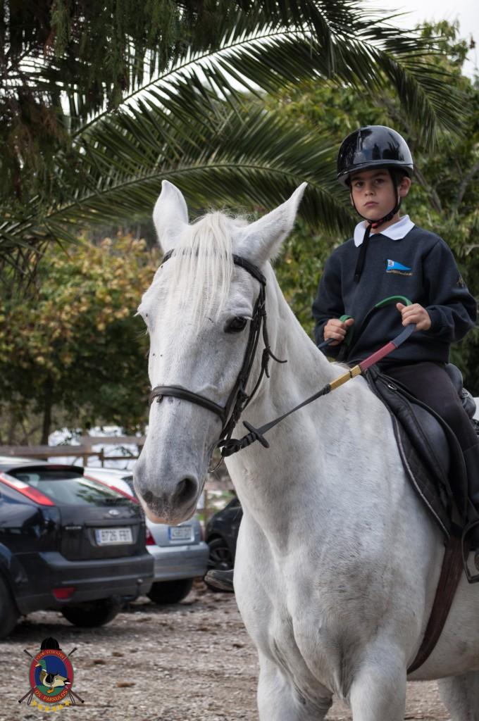 Os Parrulos_clases de equitación_hipica La Coruña_T22