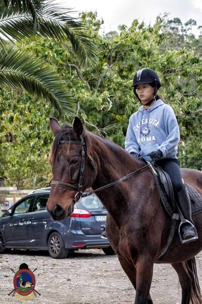 Os Parrulos_clases de equitación_hipica La Coruña_T29