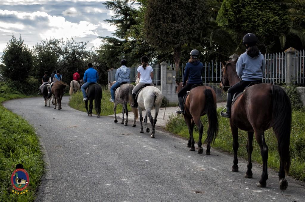 Os Parrulos_clases de equitación_hipica La Coruña_T30