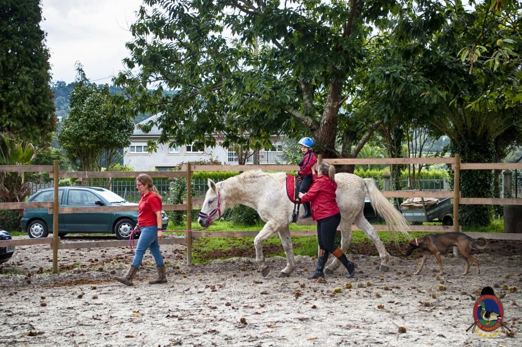 Os Parrulos_equinoterapia_clases de equitación_hipica La Coruña_T1