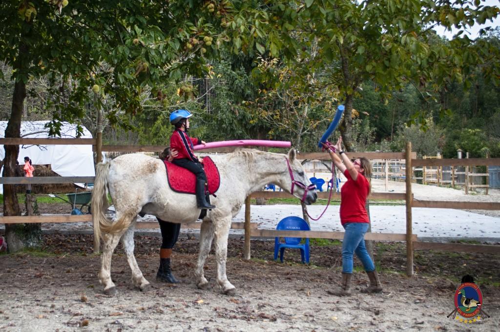 Os Parrulos_equinoterapia_clases de equitación_hipica La Coruña_T5