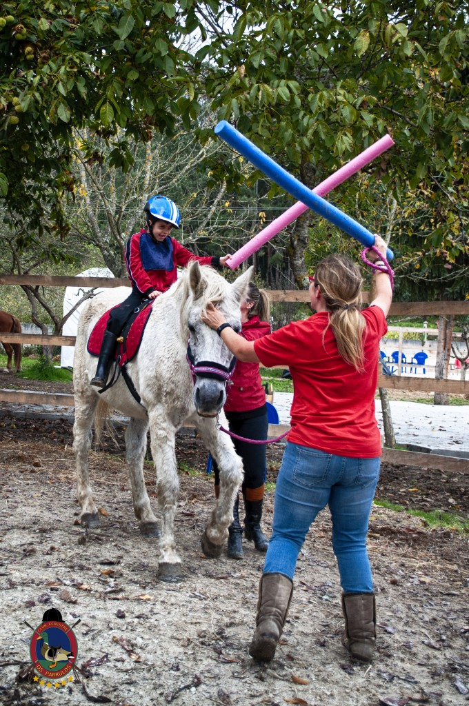 Os Parrulos_equinoterapia_clases de equitación_hipica La Coruña_T6