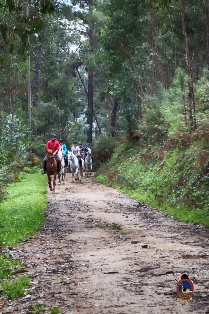 Os Parrulos_rutas a caballo_clases de equitación_hipica La Coruña_T1