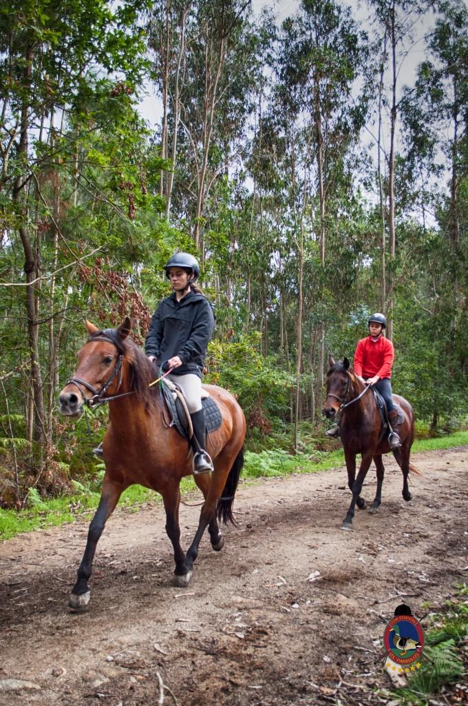 Os Parrulos_rutas a caballo_clases de equitación_hipica La Coruña_T10