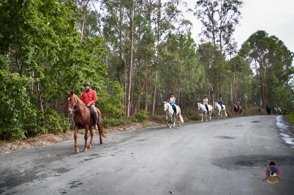 Os Parrulos_rutas a caballo_clases de equitación_hipica La Coruña_T12