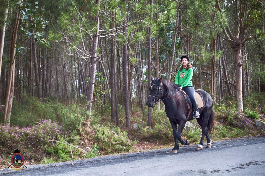 Os Parrulos_rutas a caballo_clases de equitación_hipica La Coruña_T15