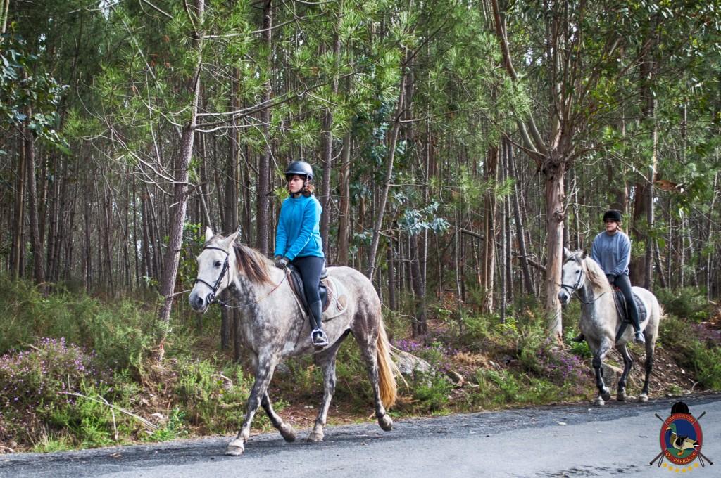 Os Parrulos_rutas a caballo_clases de equitación_hipica La Coruña_T16