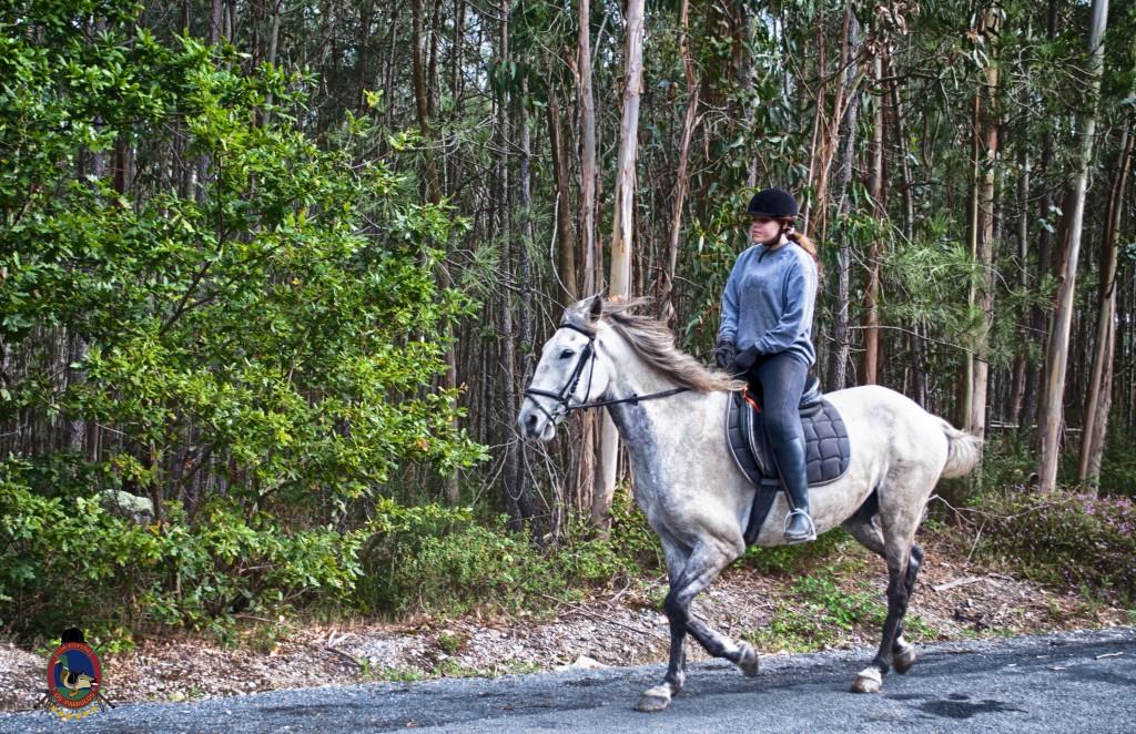 Os Parrulos_rutas a caballo_clases de equitación_hipica La Coruña_T17