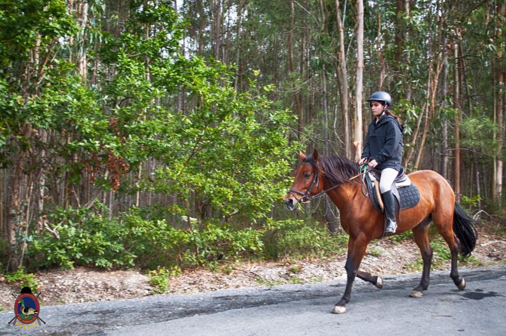 Os Parrulos_rutas a caballo_clases de equitación_hipica La Coruña_T18