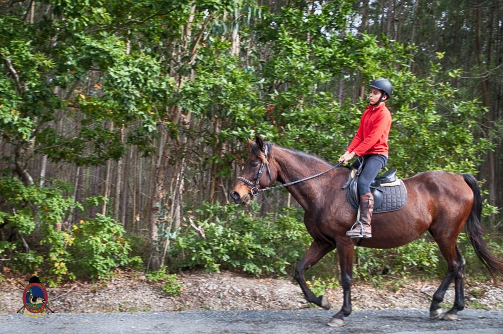 Os Parrulos_rutas a caballo_clases de equitación_hipica La Coruña_T19