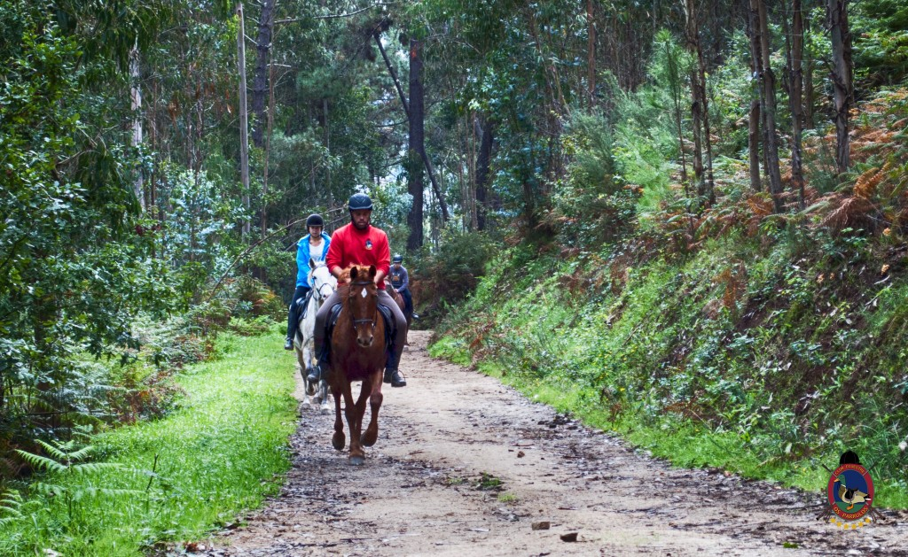Os Parrulos_rutas a caballo_clases de equitación_hipica La Coruña_T2