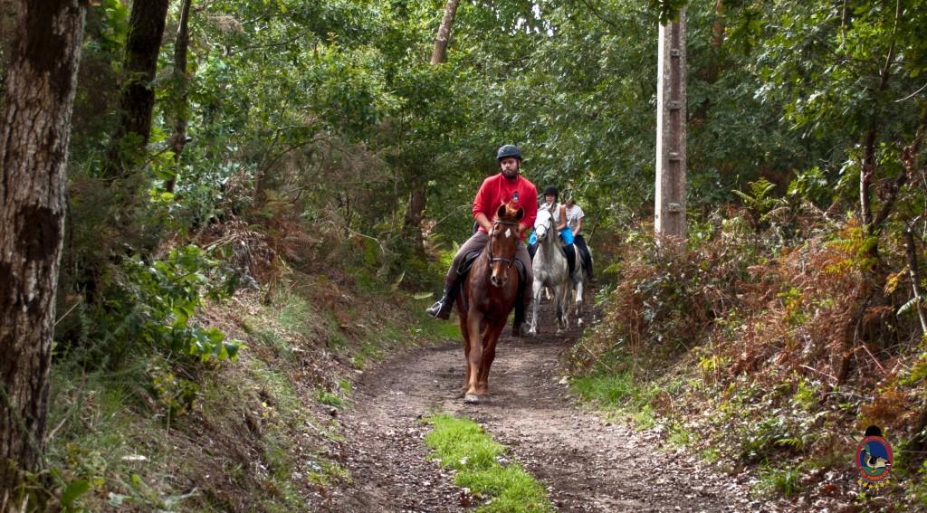 Os Parrulos_rutas a caballo_clases de equitación_hipica La Coruña_T21