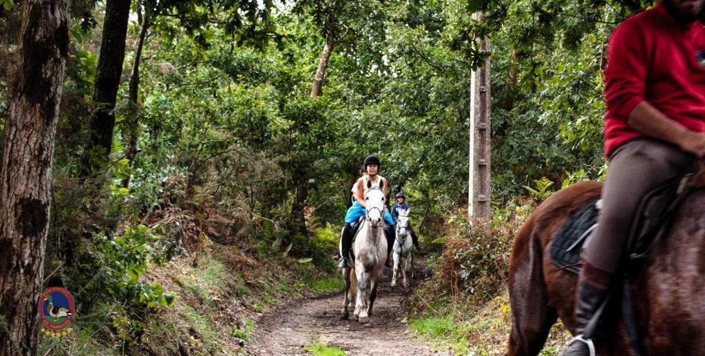 Os Parrulos_rutas a caballo_clases de equitación_hipica La Coruña_T22