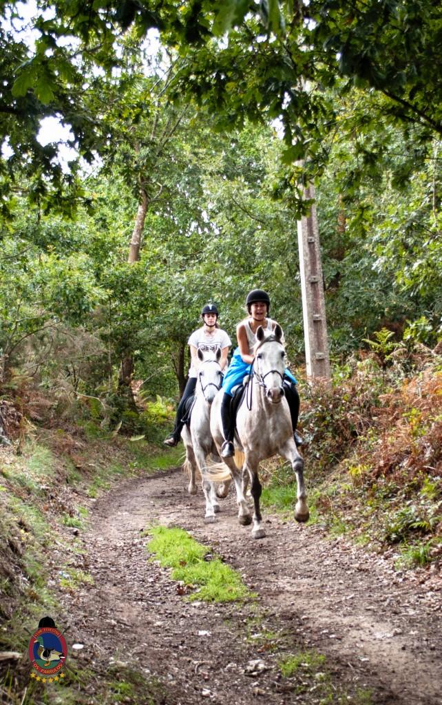 Os Parrulos_rutas a caballo_clases de equitación_hipica La Coruña_T23