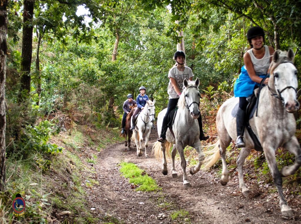 Os Parrulos_rutas a caballo_clases de equitación_hipica La Coruña_T24