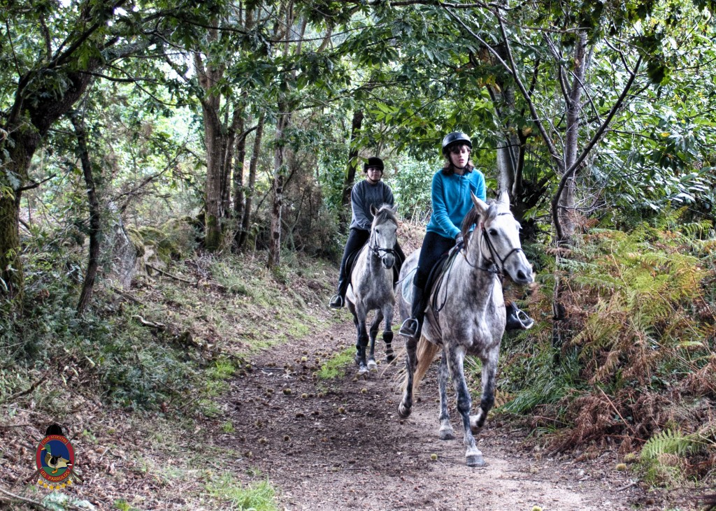 Os Parrulos_rutas a caballo_clases de equitación_hipica La Coruña_T27