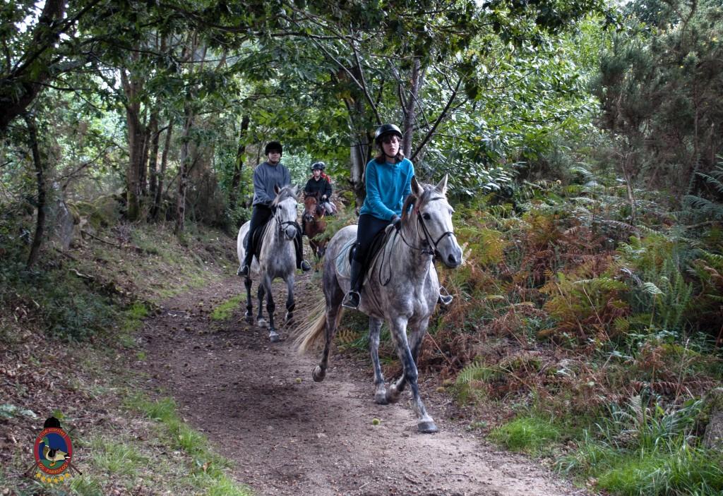 Os Parrulos_rutas a caballo_clases de equitación_hipica La Coruña_T28
