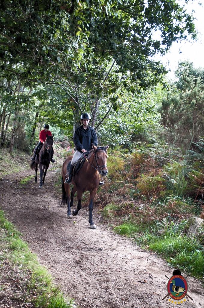 Os Parrulos_rutas a caballo_clases de equitación_hipica La Coruña_T29
