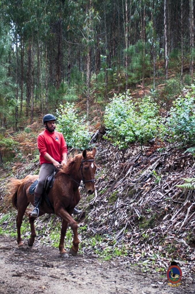 Os Parrulos_rutas a caballo_clases de equitación_hipica La Coruña_T3