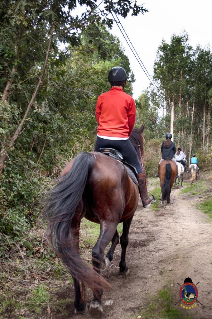 Os Parrulos_rutas a caballo_clases de equitación_hipica La Coruña_T30