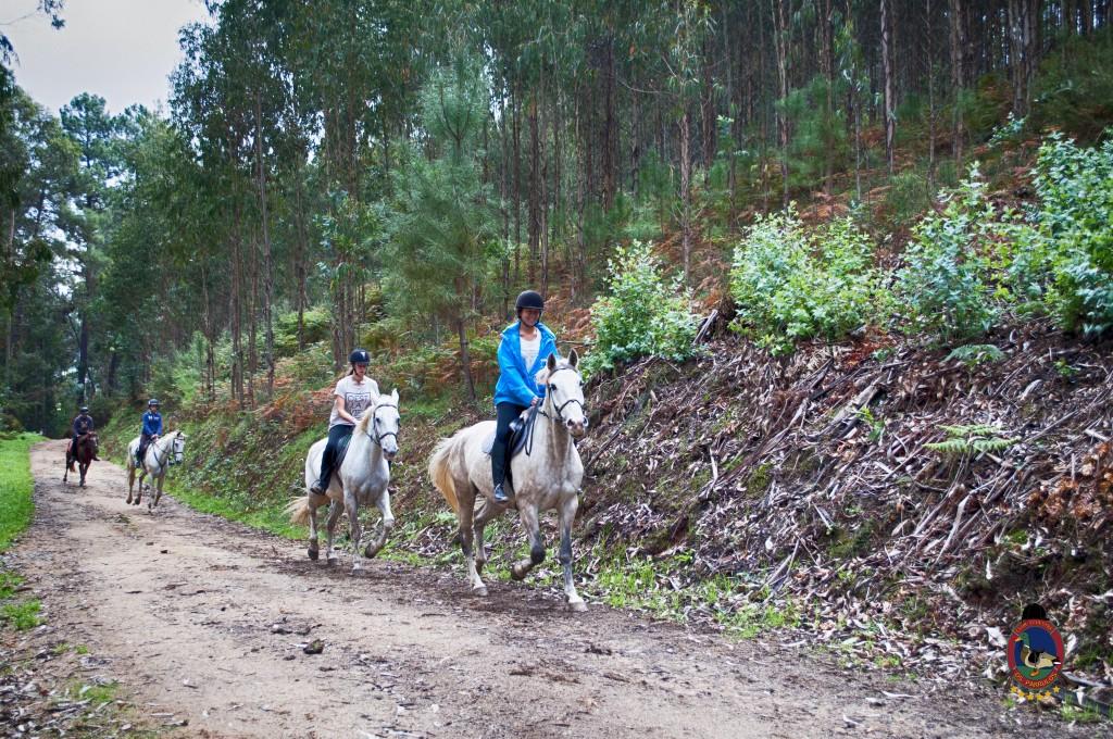 Os Parrulos_rutas a caballo_clases de equitación_hipica La Coruña_T5